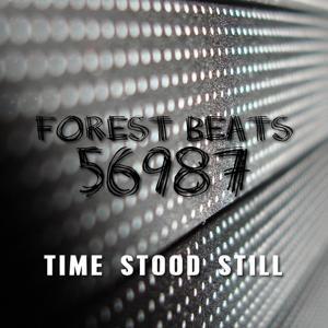 Time Stood Still (Radio Edit)