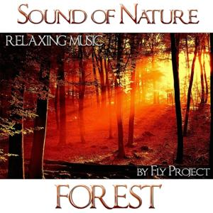 Sound of Nature: Forest