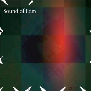 Sound of Edm (2014)