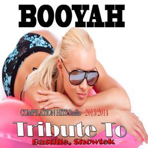 Booyah: Tribute to Bastille, Showtek (Compilation Hits Radio 2014)