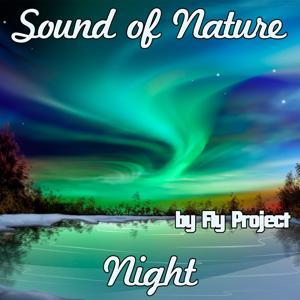 Sound of Nature: Night