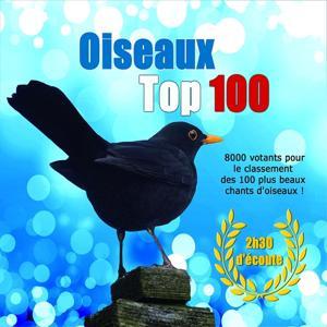 Oiseaux Top 100 (Les 100 plus beaux chants d'oiseaux)