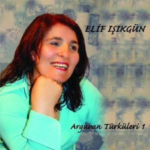 Arguvan Türküleri, Vol. 1