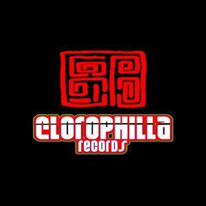 Minimal People, Vol. 4