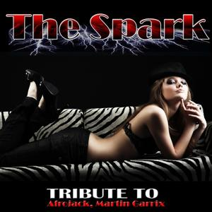 The Spark: Tribute to Afrojack, Martin Garrix