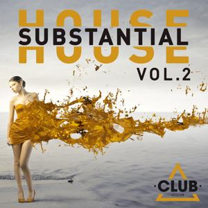 Substantial House, Vol. 2