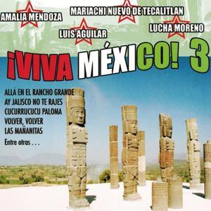 Viva Mexico, Vol. 3