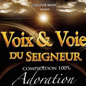 Voix & voie du seigneur, vol. 3 (Compilation 100% adoration)