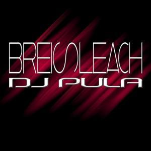Breisleach