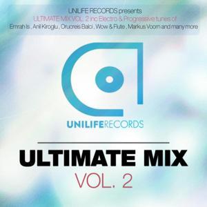 Ultimate Mix Vol.2