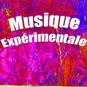Musique expérimentale
