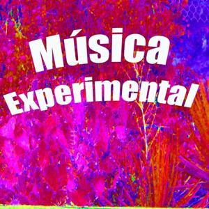 Música Experimental
