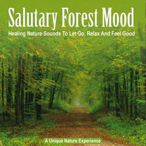 Salutary Forest Mood: Healing Nature Sounds to Let Go, Relax and Feel Good