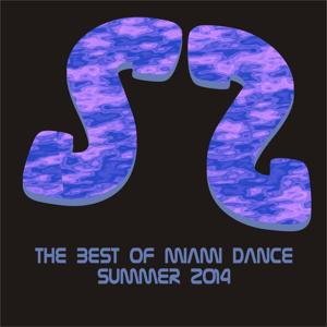 The Best of Miami Dance Summer 2014
