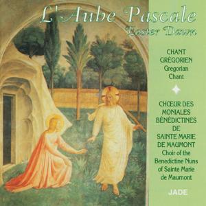 Easter Dawn: Gregorian Chant