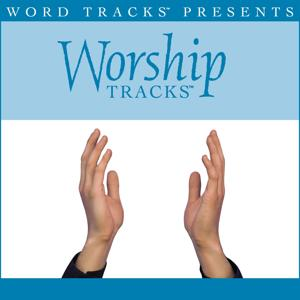 Worship Tracks - The Potter's Hand - as made popular by Darlene Zschech [Performance Track]