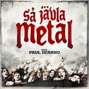 Så jävla metal!