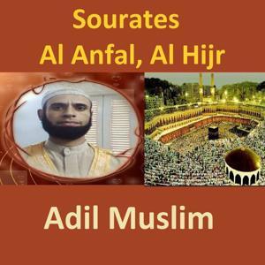 Sourates Al Anfal, Al Hijr