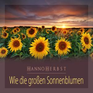 Wie die großen Sonnenblumen