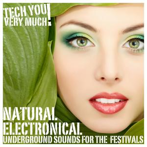 Natural Electronical (Underground Sounds for the Festivals)