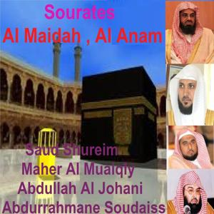 Sourates Al Maidah, Al Anam