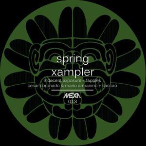 Spring Xampler
