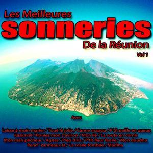 Les meilleures sonneries  de la Réunion, vol. 1