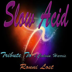 Slow Acid: Tribute to Calvin Harris