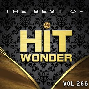 Hit Wonder: The Best of, Vol. 266