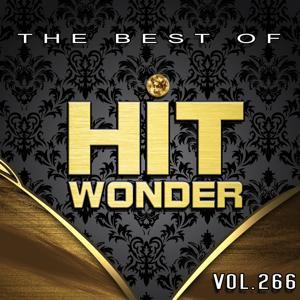 Hit Wonder: The Best of, Vol. 266
