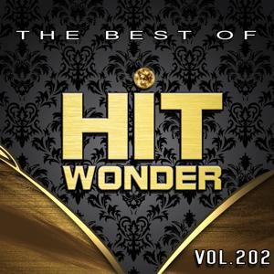 Hit Wonder: The Best of, Vol. 202