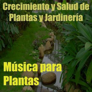 Música para Plantas, Vol. 16 (Crecimiento y Salud de Plantas y Jardinería)