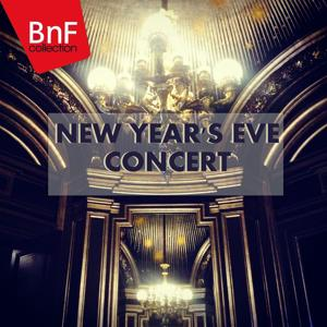 New Year's Eve Concert: The Best Classical Music Programmed at Vienna