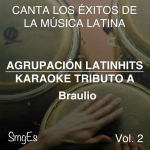 Instrumental Karaoke Series: Braulio, Vol. 2