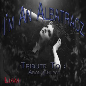 I'm an Albatraoz: Tribute to Aron Chupa