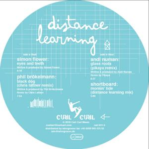 Distance Learning (Part 2)