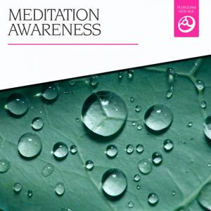 Meditation Awareness