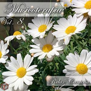 Musicoterapia, Vol. 8 (Momento relax)