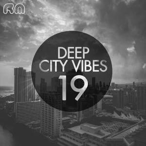Deep City Vibes, Vol. 19