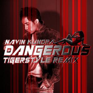 Dangerous (Tigerstyle Remix)