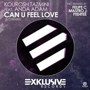 Can U Feel Love (2012 Remixes)