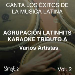 Instrumental Karaoke Series: Varios Artistas, Vol. 2
