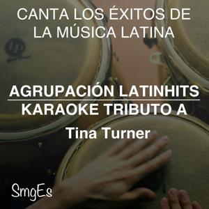 Instrumental Karaoke Series: Tina Turner