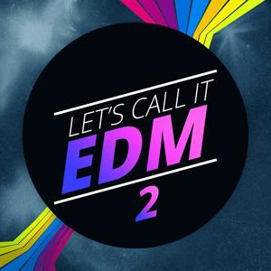 Let's Call It EDM 2