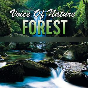Voice of Nature Forest