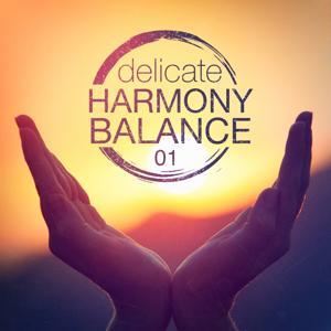 Delicate Harmony Balance, Vol. 1