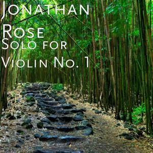 Solo for Violin