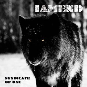 Syndicate of One