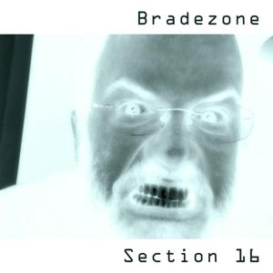 Section 16
