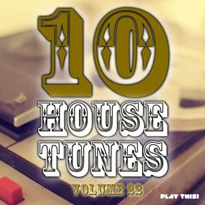 10 House Tunes, Vol. 22